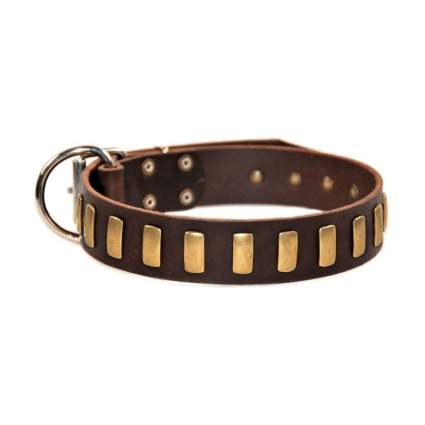 Dean and Tyler Plated Perfection Dog Collar