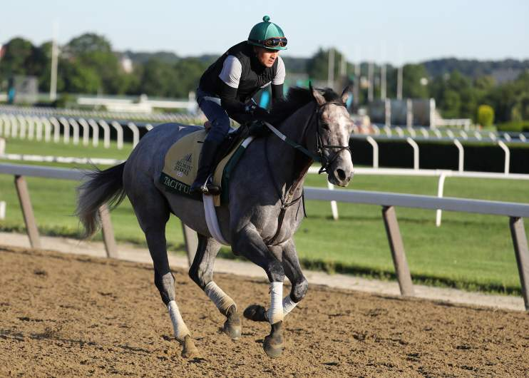 Tacitus is the favorite for the 151st running of the Belmont Stakes, which goes off today at 6:48pm ET.