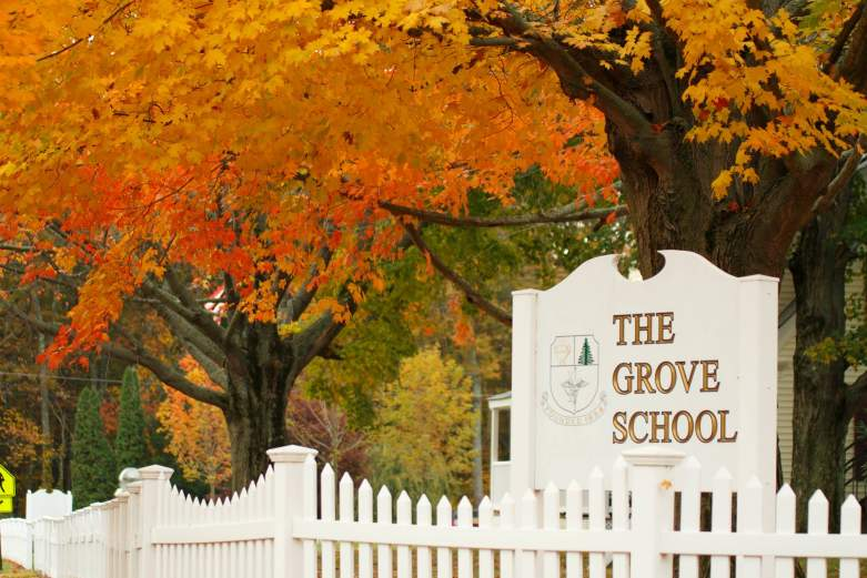 chelsy zelasko grove school