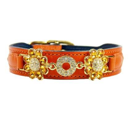 hartman & rose daisy collection luxury dog collar