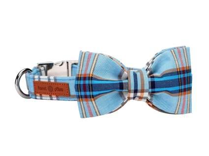 Lionet Paws bowtie luxury dog collar