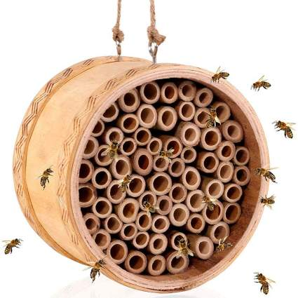 Mason Bee House Gardening Gadget