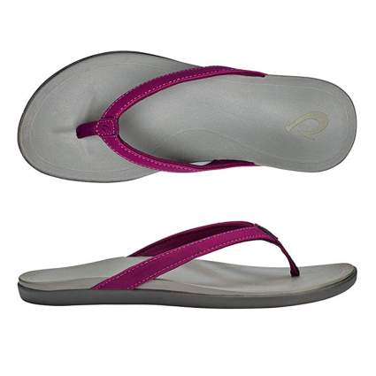 purple and gray flip flops