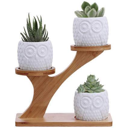 Owl Succulent Pots With Three Tier Holder