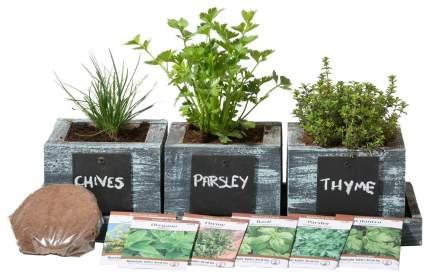 FATPLANTS Herb Garden Planter - Complete Indoor Herb Seed Growing Kit