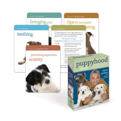 cesar millan puppy raising deck gifts for dog lovers