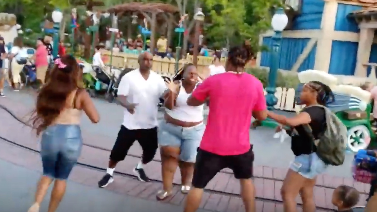 Disneyland Fight Felony Charges