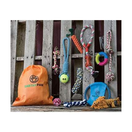 earthypaw dog toy set gifts for dog lovers