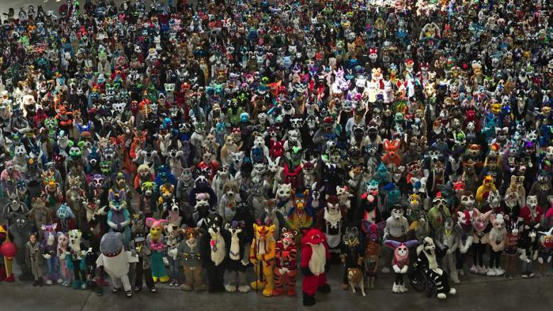 furries in pittsburgh at Anthrocon