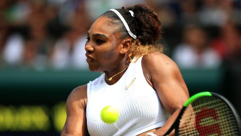 Serena Williams Career Earnings
