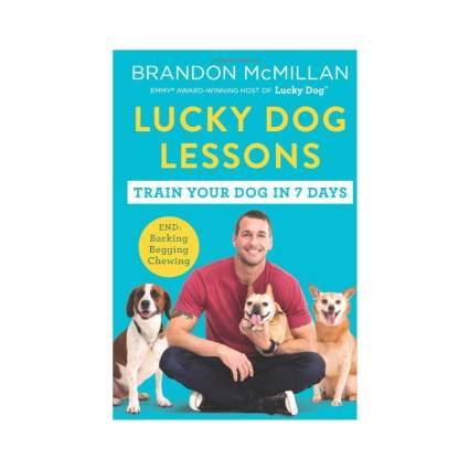 lucky dog lessons dog training books