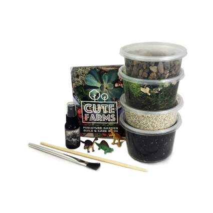 terrarium kit xmas gifts for him