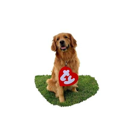 comfy pup ty tag large dog halloween costume
