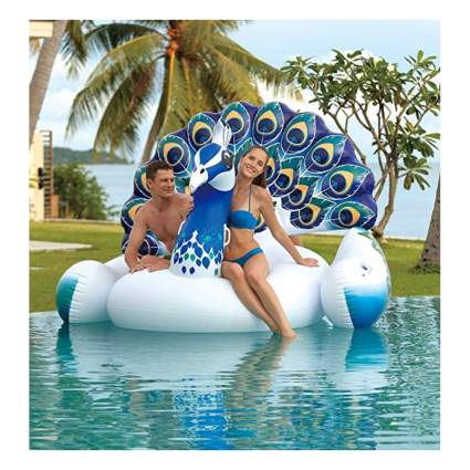 Large peacock pool float