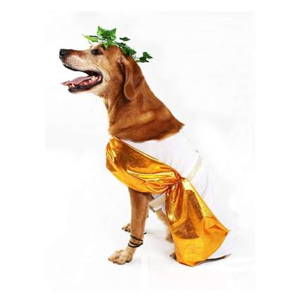 Midlee toga large dog halloween costume