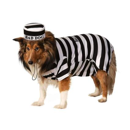 rubies prisoner large dog costume