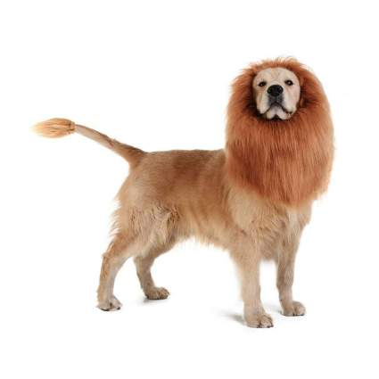 tomsenn lions mane large dog costume