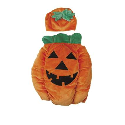 Zack & Zoey pumpking large dog halloween costume