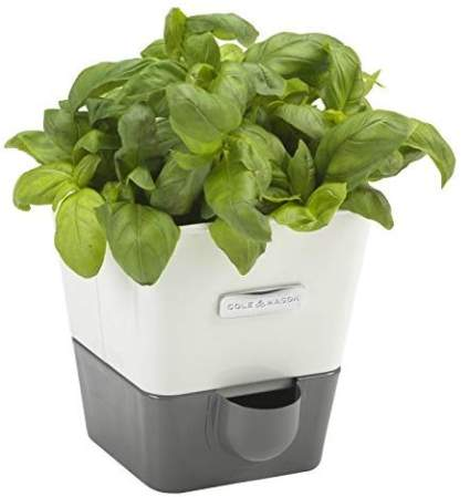 COLE & MASON Self-Watering Indoor Herb Garden Planter