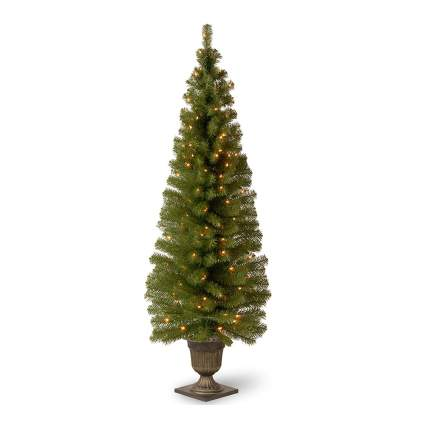Christmas tree in decorative urn