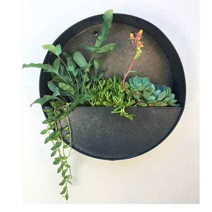 round metal hanging succulent planter