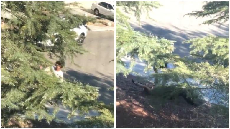 San Bernardino County Sheriff shooting