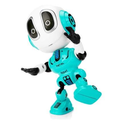 Sopu Talking Robot