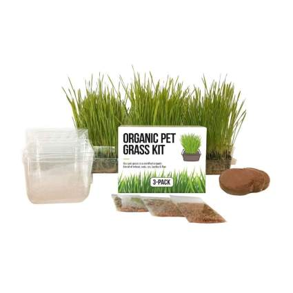 the cat ladies cat grass christmas gifts for cats