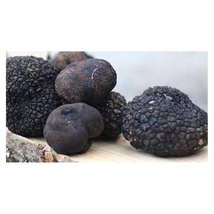 where to buy truffles from Italy