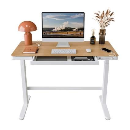 flexispot comhar desk