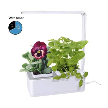 small indoor hydroponic herb garden