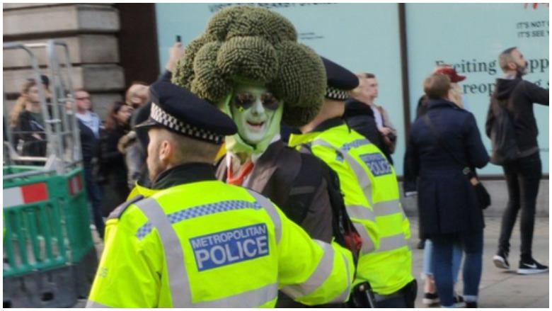 man dressed like broccoli