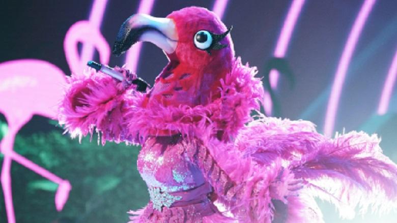 Flamingo Masked Singer