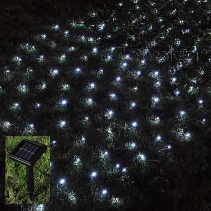 Cool white net lighting