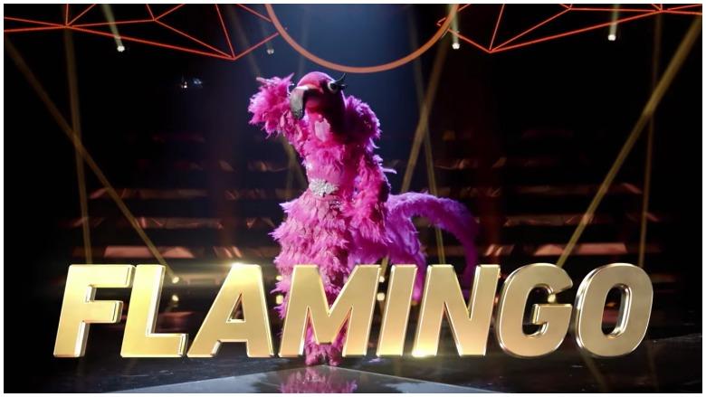 Flamingo on The Masked Singer