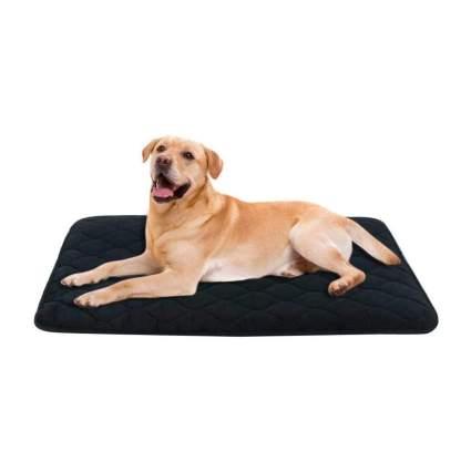 B&G Dog Mat