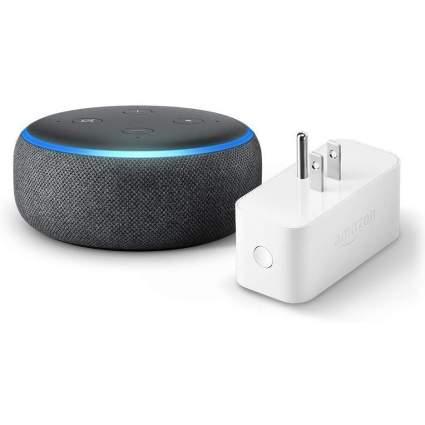 Echo dot with smart plug