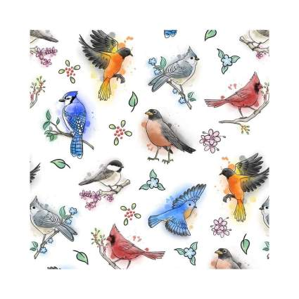 Graphics & More Northeastern Birds Wrapping Paper