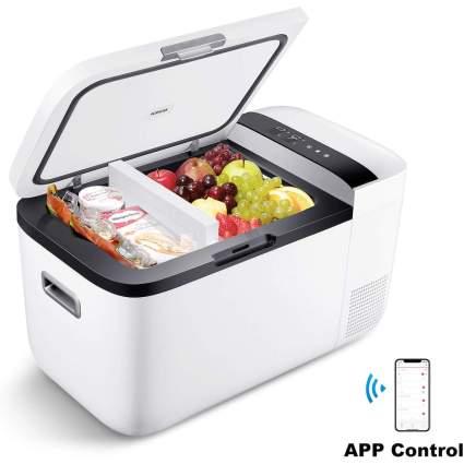 mini fridge cooler