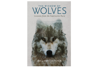 The Wisdom of Wolves: Lessons From the Sawtooth Pack - Hardcover Book