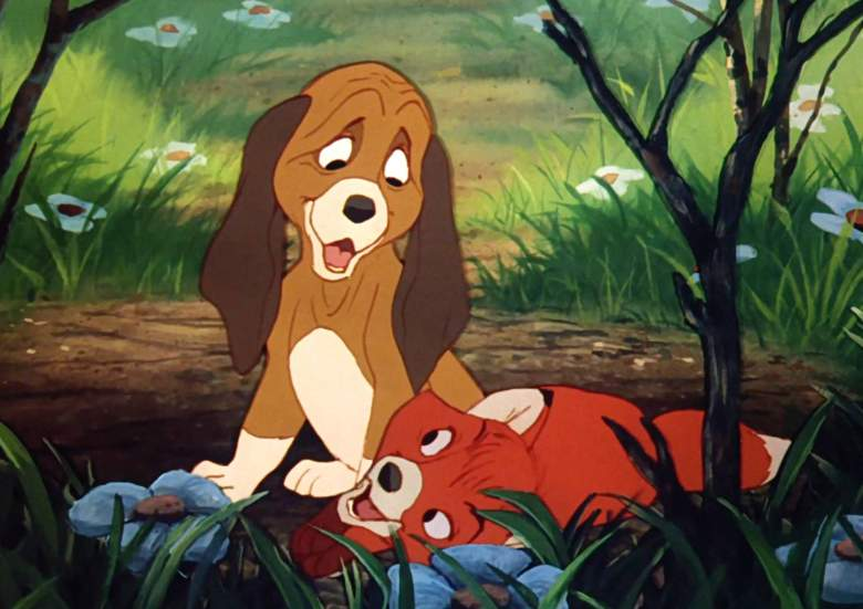 stream the fox and the hound