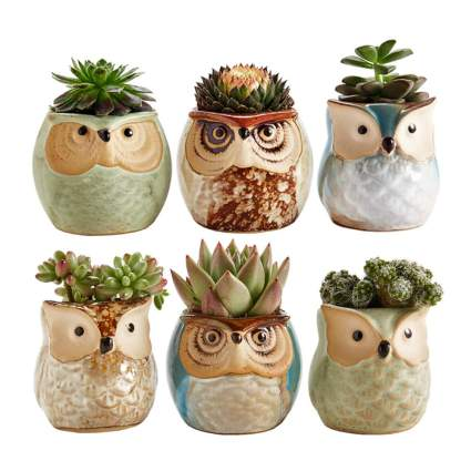 ceramic owl succulent pots