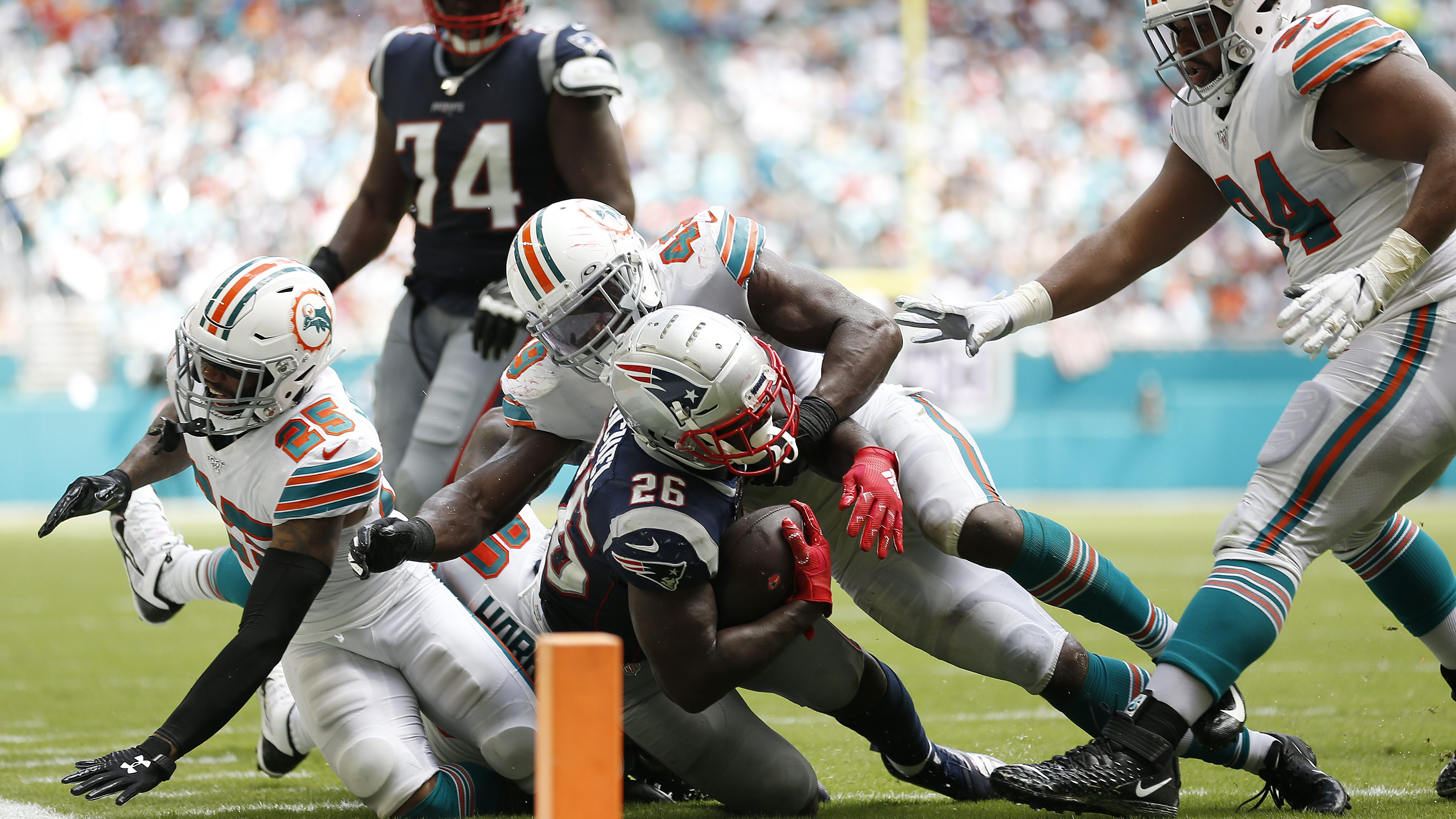 Patriots vs dolphins betting line kalah taruhan betting