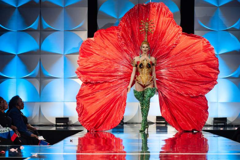 Miss Universe Puerto Rico Best National Costume
