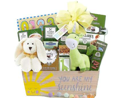 Baby Gift Basket Of Joy