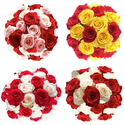 Valentine's Day Rose Delivery - 50 Flowers
