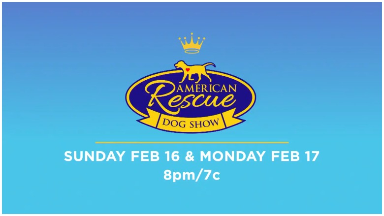 2020 American Rescue Dog Show