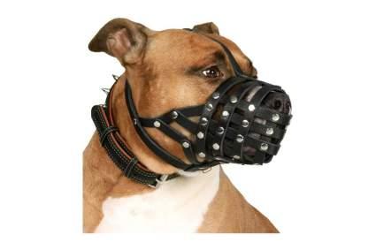CollarDirect Leather Pitbull Dog Muzzle