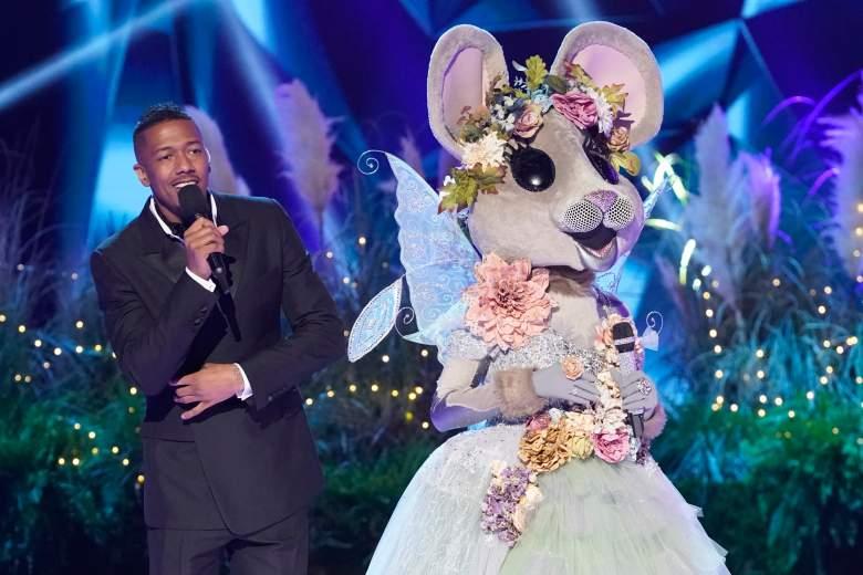 Mouse Masked Singer
