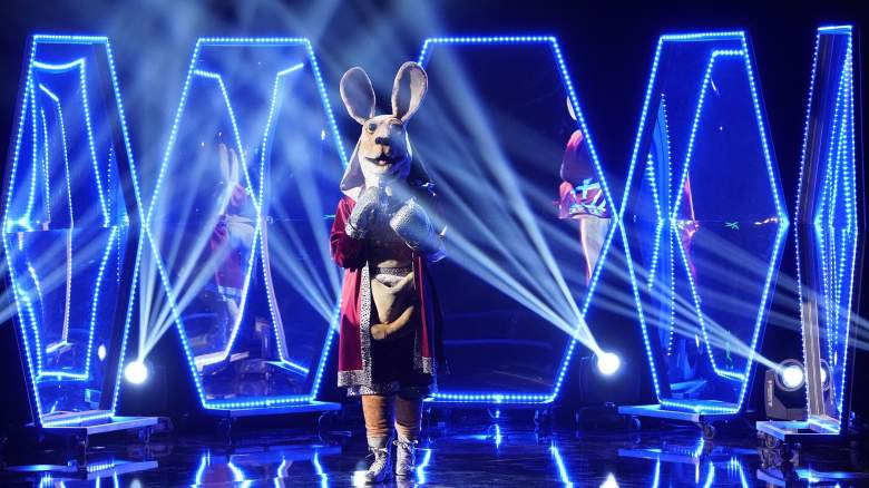 The Masked Singer Kangaroo